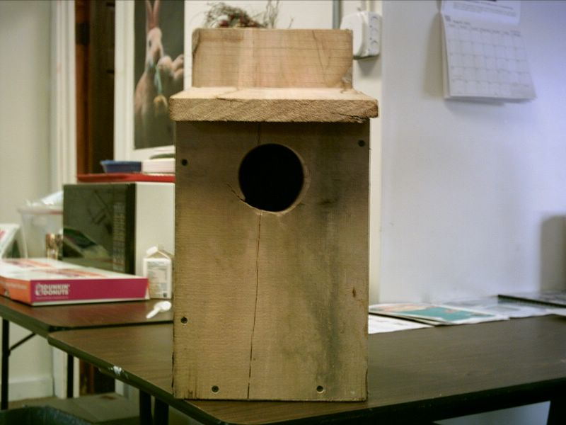 big bird houses plans - Big Bird House Plans
